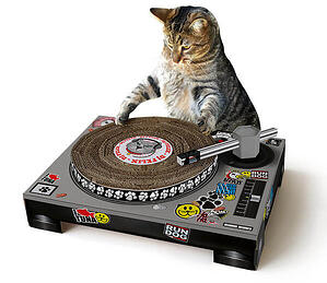 ebb8 cat scratch dj Christmas gift music